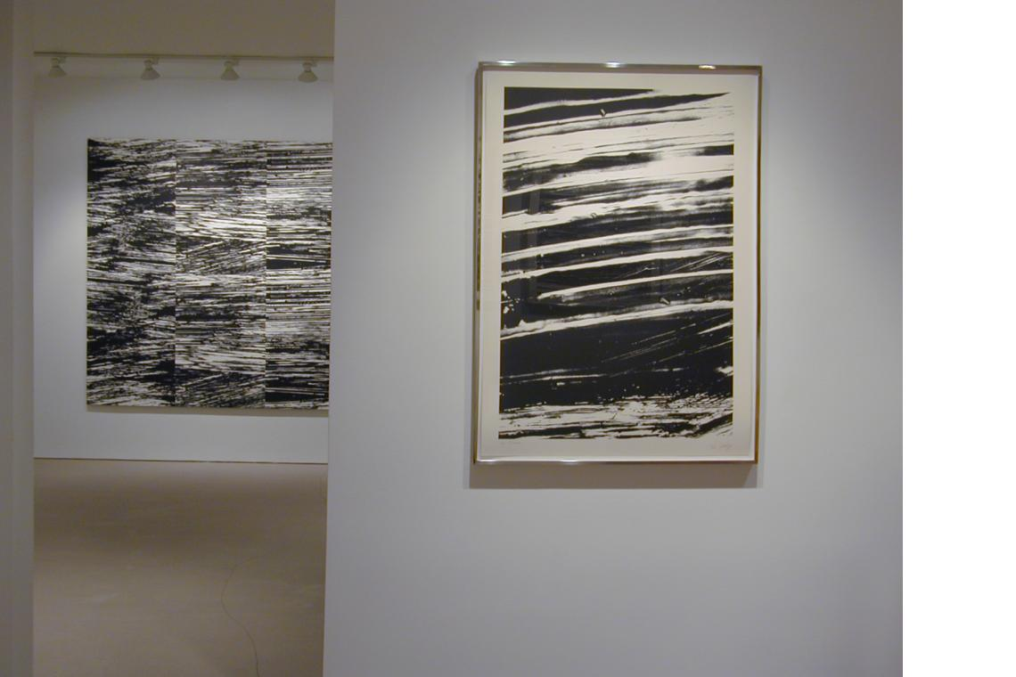 Left to Right: River II 2005, The Rhine from States of the River 2005