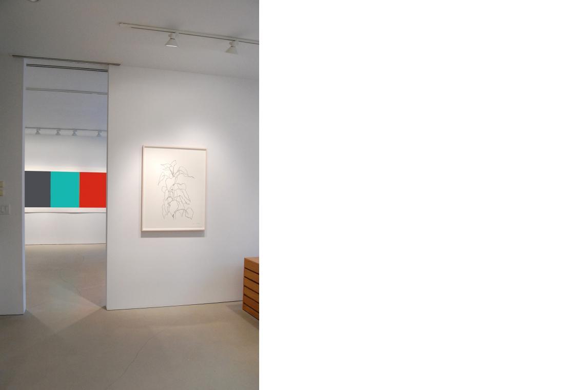 Blue Gray Green Red, 2008; Sunflower II, 2004