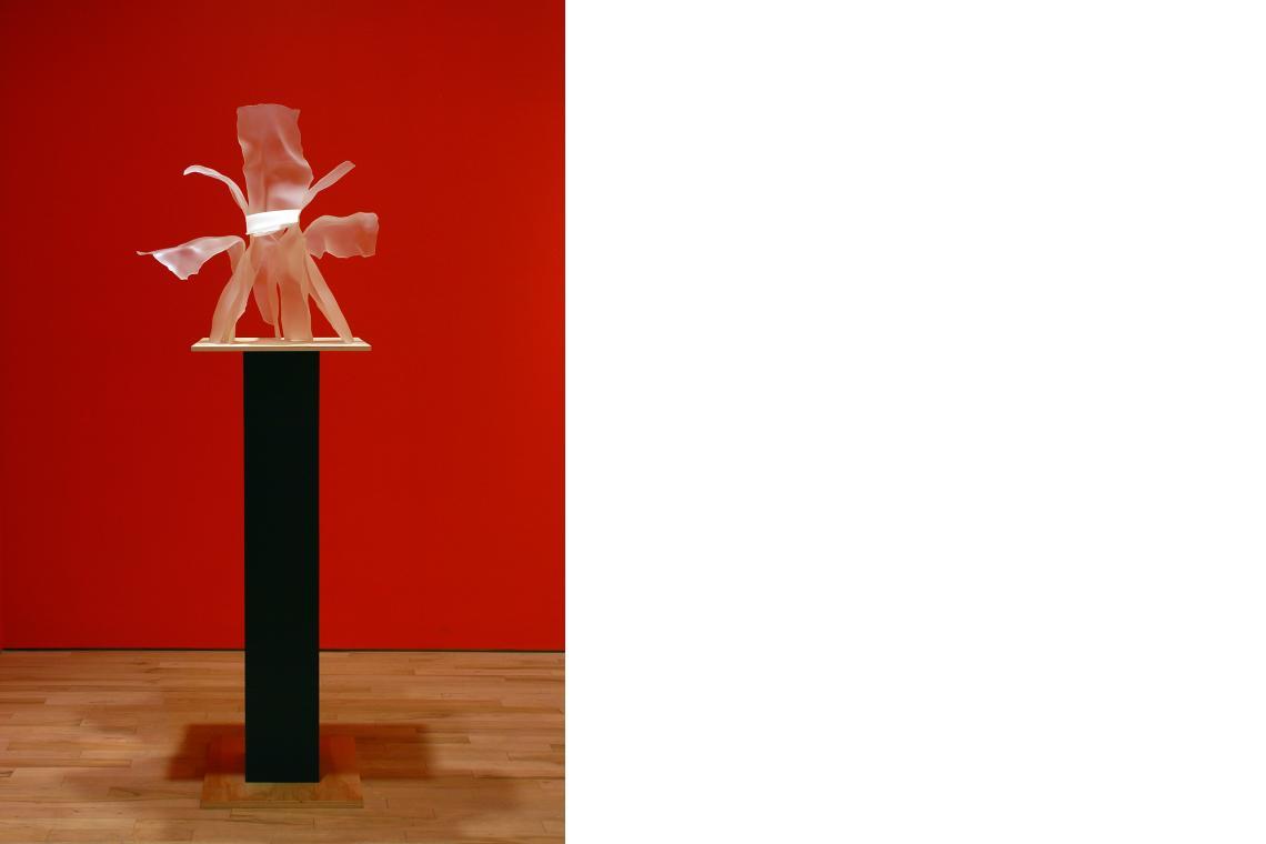 Memory of Sophie Calle's Flower, 2012