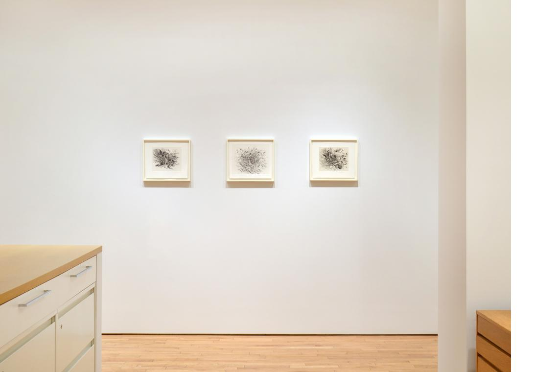 Untitled 1 (Amulets), 2008; Haka, 2012; Untitled (Grey Area), 2010