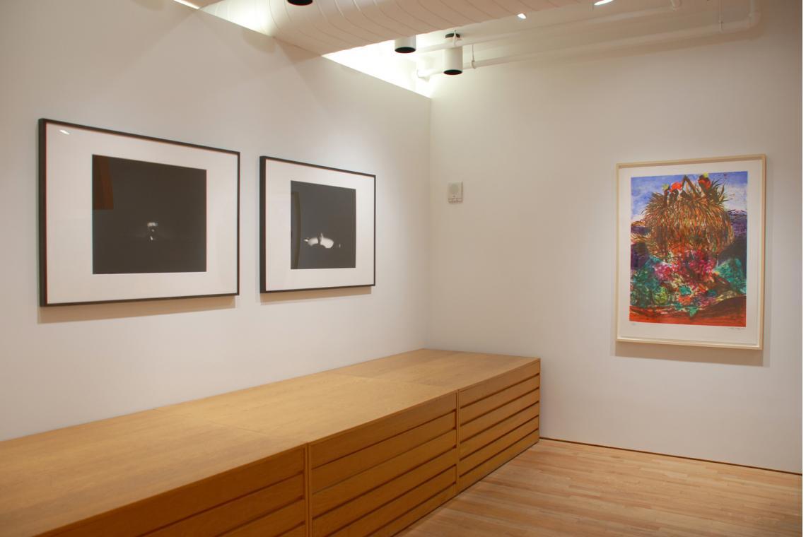 Ann Hamilton, face...mr. innui, 2003; Ann Hamilton, face...bobby, 2003; Malcolm Morley, Erotic Fruitos, 1993