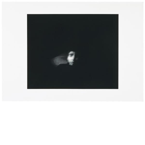 Ann Hamilton, face...emmett, 2003
