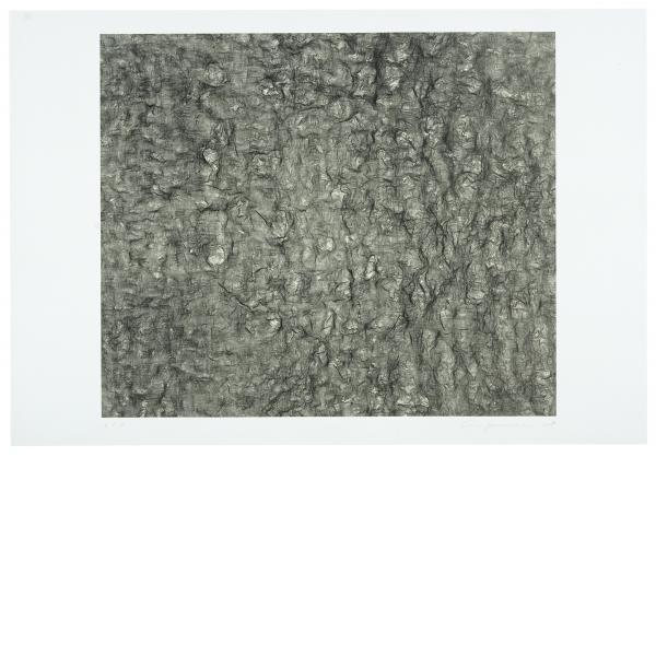Ann Hamilton, Gauge (Black), 2007