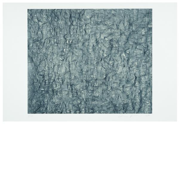 Ann Hamilton, Gauge (Blue), 2007