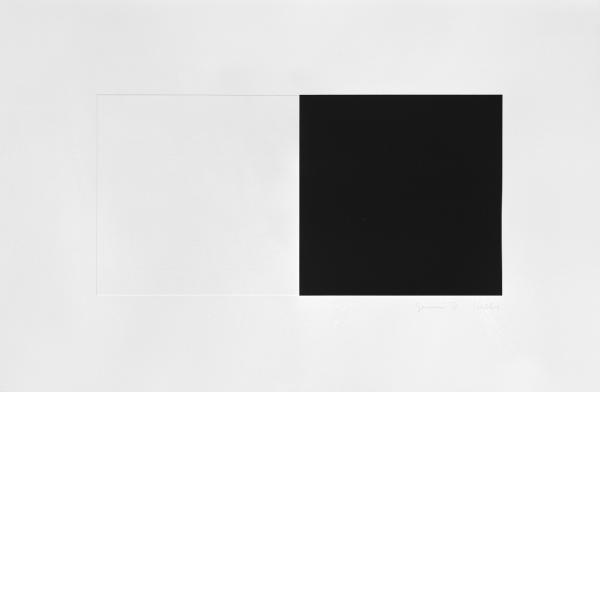 Ellsworth Kelly, White and Black, 1973