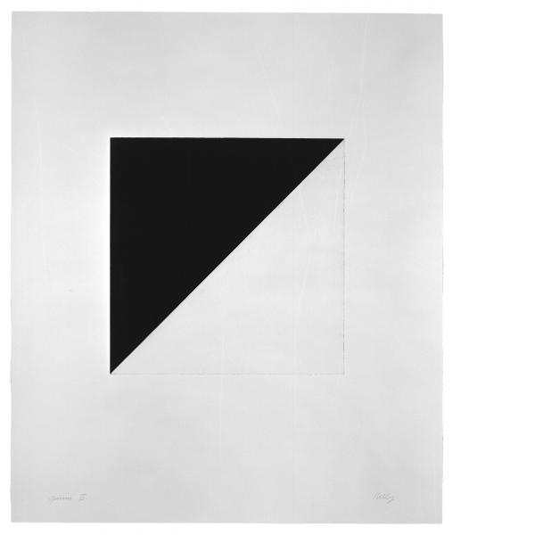 Ellsworth Kelly, Diagonal with Black, 1982