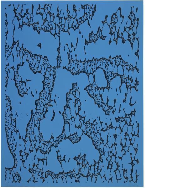 Ellsworth Kelly, Jack/Blue, 1990
