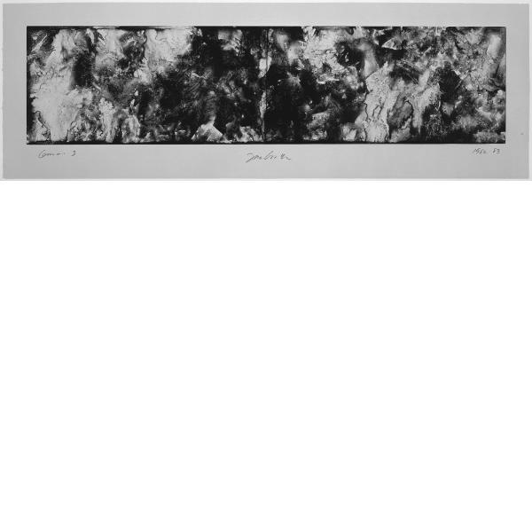 Joe Goode, Forest Fire Aftermath, 1985
