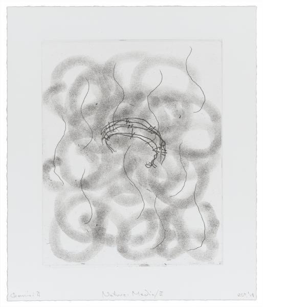 Richard Tuttle, Nature-Media/II, 2014