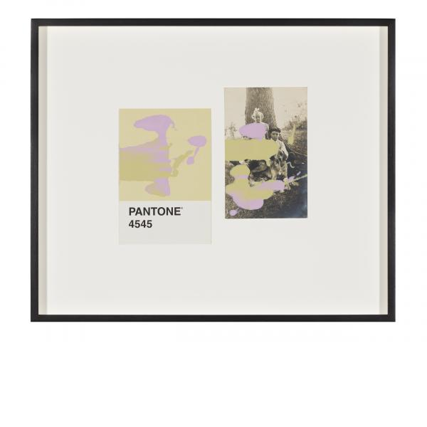 Tacita Dean, Pantone Pair (4545), 2019