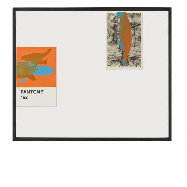 Tacita Dean, Pantone Pair (152), 2019