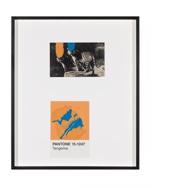 Tacita Dean, Pantone Pair (Tangerine), 2020
