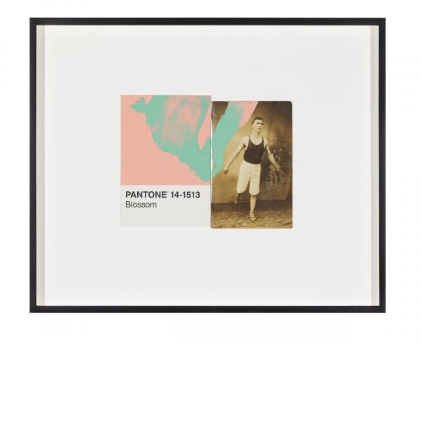 Tacita Dean, Pantone Pair (Blossom), 2019