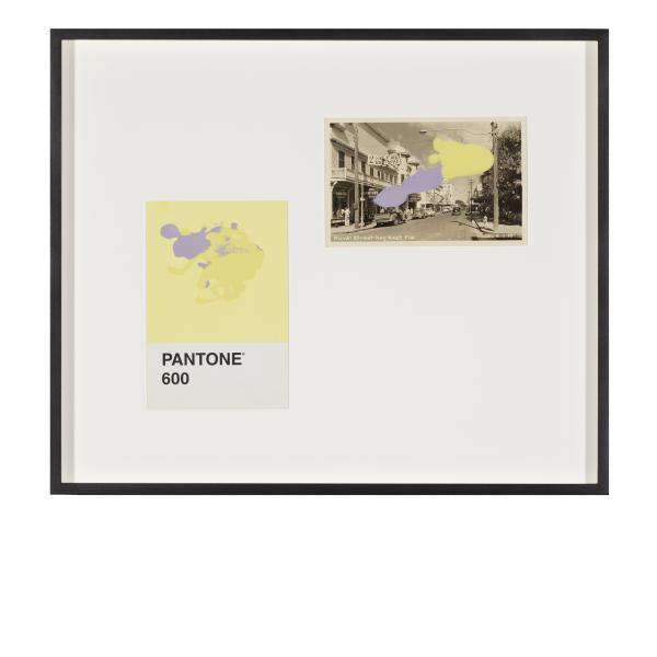 Tacita Dean, Pantone Pair (600), 2019