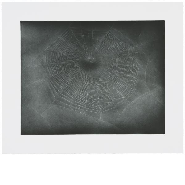 Vija Celmins, Untitled (Web 3), 2002