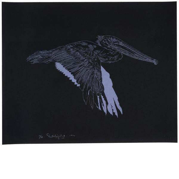 William Crutchfield, Brown Pelican, 1971