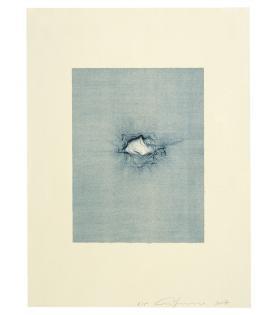 Ann Ann Hamilton, Script B, 2008