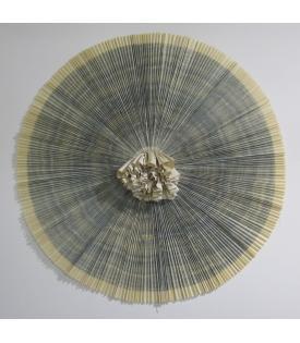 Ann Hamilton, ciliary, 2010