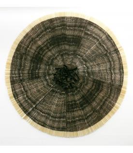 Ann Hamilton, ciliary, 2010, Variable Edition