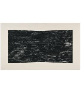 Ellsworth Kelly, Black (Texture), 2001