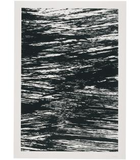 Ellsworth Kelly, The Seine from States of the River, 2005