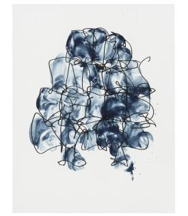 Frank Gehry, Puzzled #5, 2011