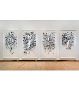 Myriads, Only By Dark, 2014, Installation View