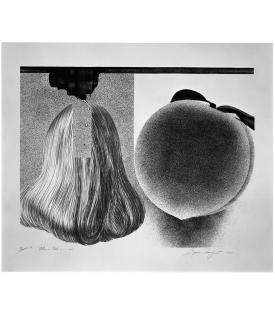 James Rosenquist, When a Leak…B&W, 1982