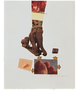 Robert Rauschenberg, Horsefeathers Thirteen - XV, 1972