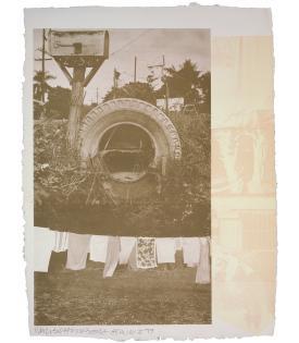 Robert Rauschenberg, Rookery Mounds - Mud Dauber, 1979