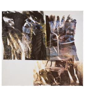 Robert Rauschenberg, Relic (Speculations), 1997