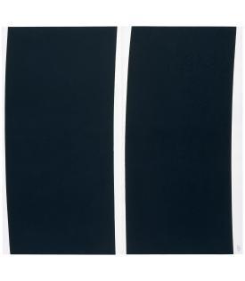 Richard Serra, Double Transversal, 2004