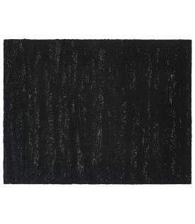 Richard Serra, Composite XIX, 2019