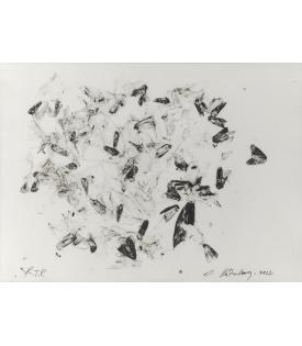 Susan Rothenberg, Moths and Peonies, 2012
