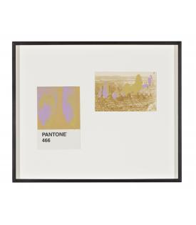Tacita Dean, Pantone Pair (466), 2019