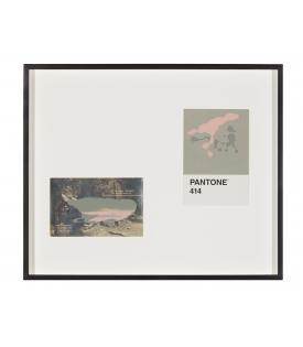 Tacita Dean, Pantone Pair (414), 2019