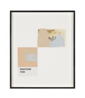 Tacita Dean, Pantone Pair (7590), 2019
